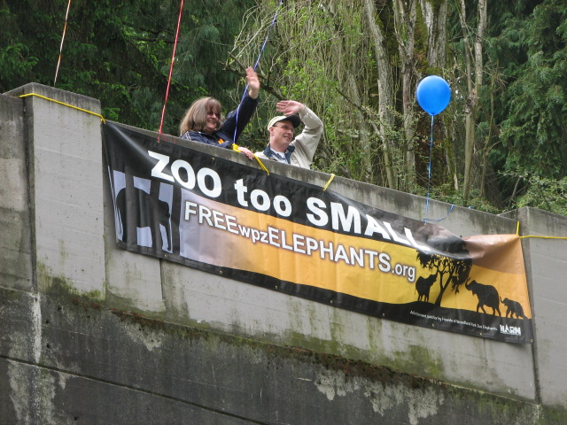 International Day of Action for Elephants