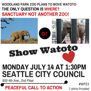 Watoto poster for 7.14.14 city council